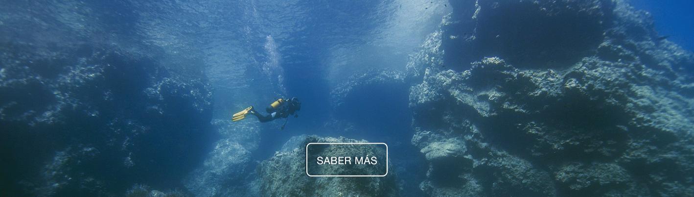 Alianza entre Intemares y Observadores del Mar