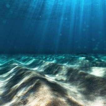 Fondo marino con sedimentos.